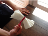 MW Tissue Paper Flowers5